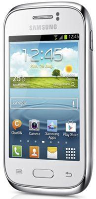 Samsung Galaxy Young S6310 Sim Free